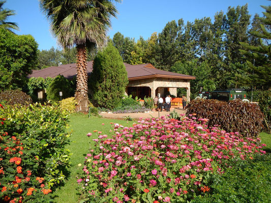 Garten der Bougainvillea Lodge / Garden of the Bougainvillea Lodge