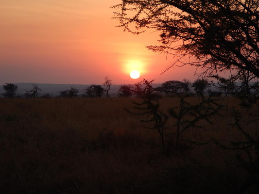 Sonnenuntergang im Serengeti Heritage Camp / Sunset in the Serengeti Heritage Camp