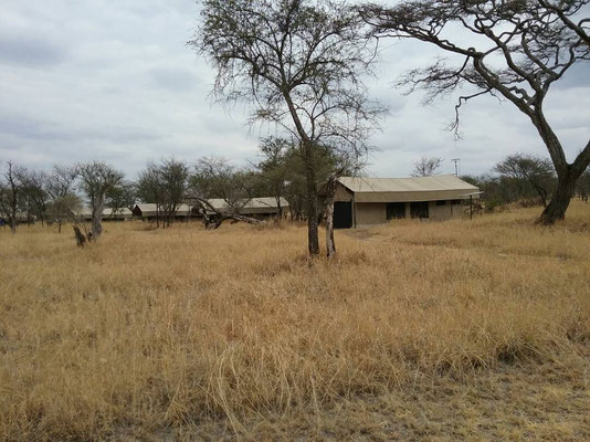 Unterkunft im Kati Kati Camp in der Serengeti / accommodation in the Kati Kati Camp in the serengeti