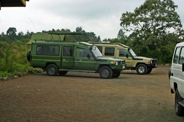 Safari - Fahrzeug / Safari - vehicle
