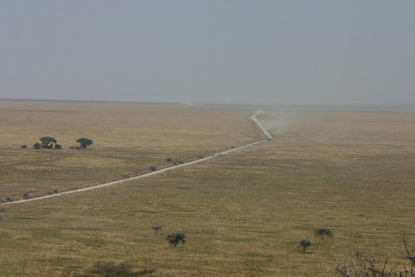 der Weg zur Serengeti / the way to serengeti