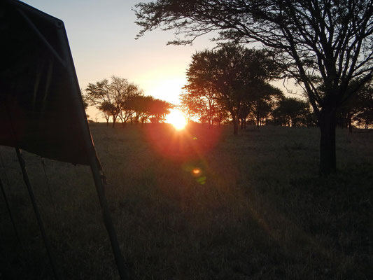 Sonnenaufgang im Serengeti Heritage Camp / Sunrise in the Serengeti Heritage Camp
