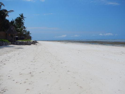 Strand auf Sansibar / beach an Zanzibar