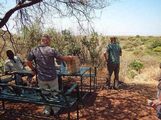 Picknickplatz im Manyara NP / Picnic area in the Manyara NP