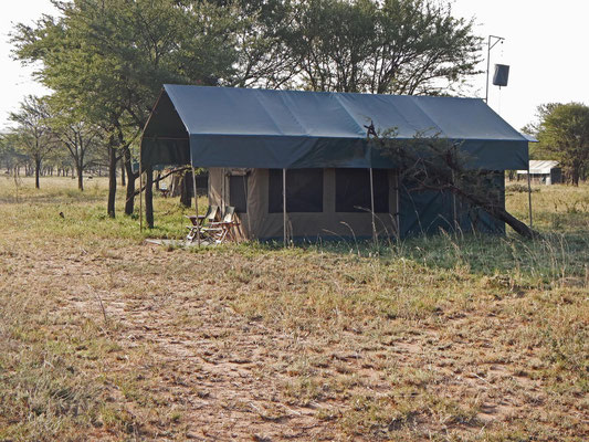 Zelt des Serengeti View Camps / Tent of the Serengeti View Camps