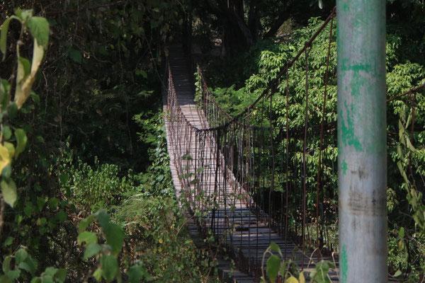 Brücke über Krokodile / Bridge over crocodiles