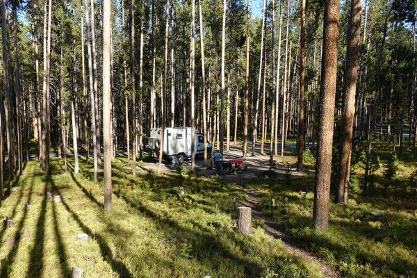 ...in den lichten Forest Campground