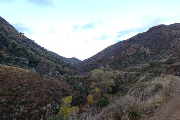 Canyon durch die Santa Rita Mountains