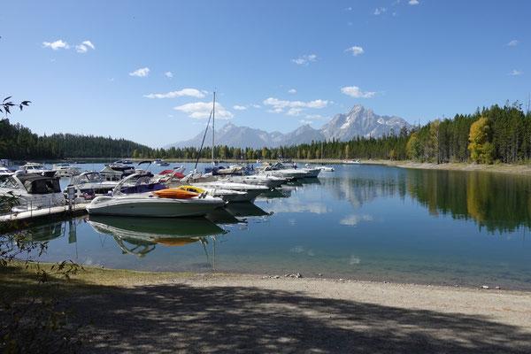 Am Jackson Lake im Grand Teton NP