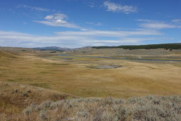 Weites Grasland im Yellowstone Park