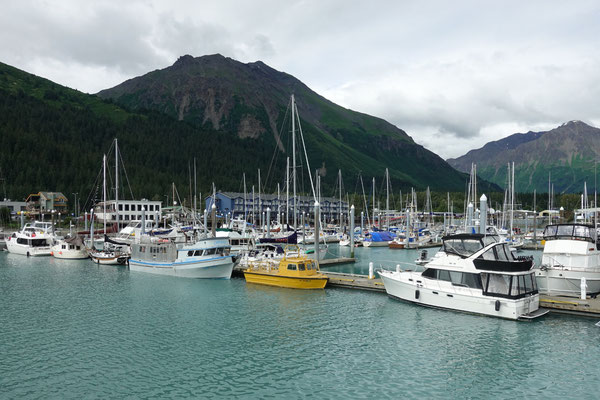 Back in Seward