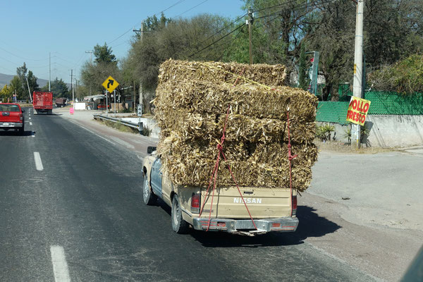 Was man in Mexico so alles transportiert...