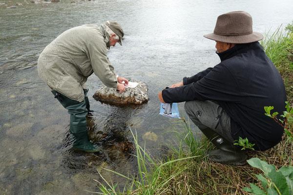Gekonnt filetiert Sepp die Fische