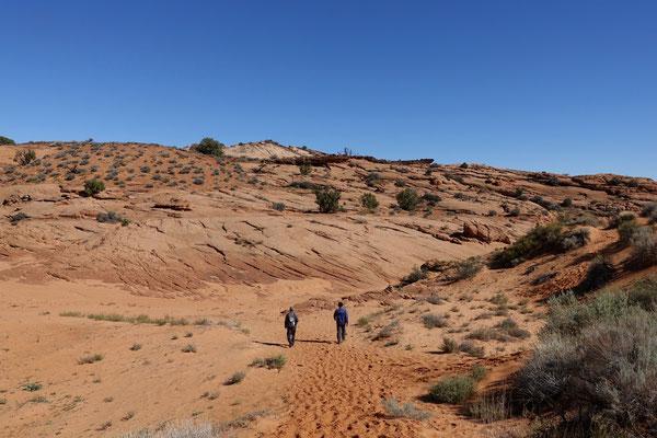 Durch ein kleines Wüstenstück geht es zum nächsten Canyon
