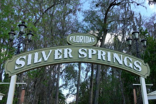 Wir besuchen die Silver Springs