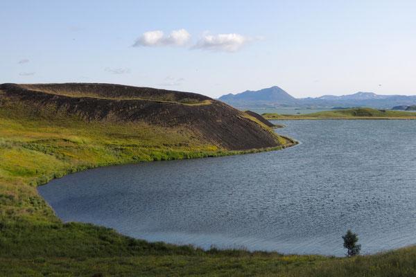 ...und grüne Pseudokrater entdeckt man rund um den Myvatn See