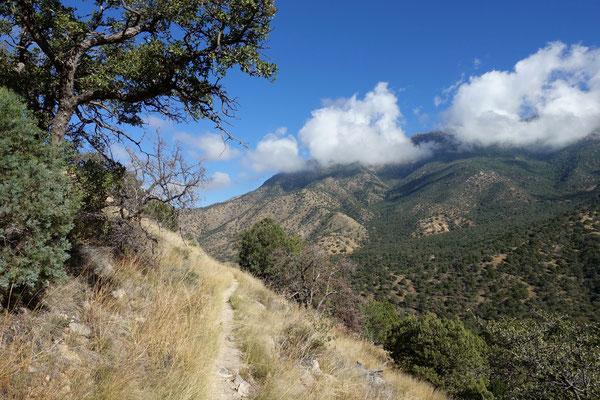 Wandern im Madera Canyon