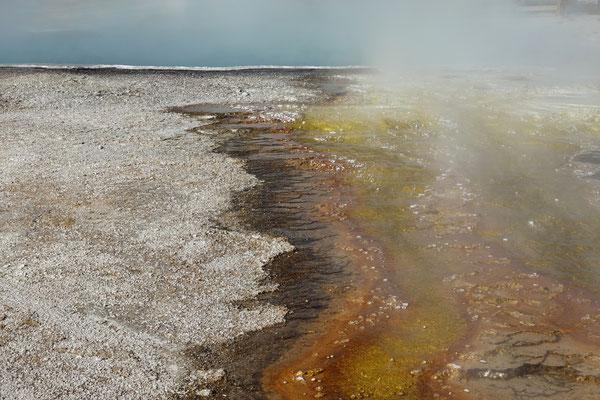 ...der Yellowstone ist ein Paradies!