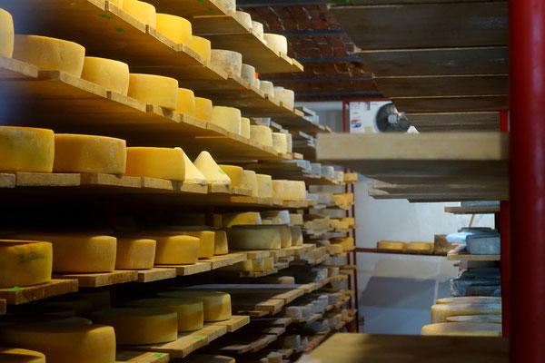 Feiner Käse wird hier produziert