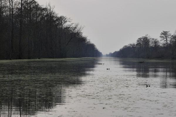 Geheimnisvolle Flüsse...