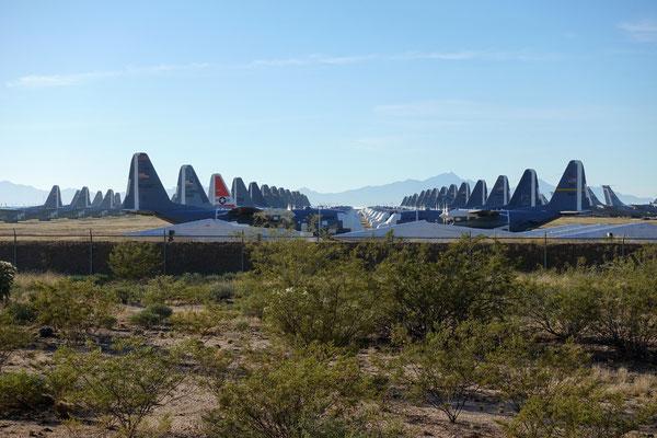 Tausende Flugzeuge warten in Tucson auf Verschrottung oder sonst was...