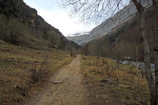 Ins Tal hinein geht es den Bergen entgegen