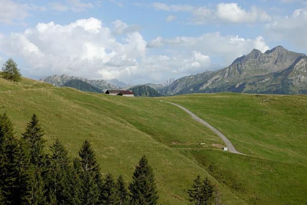 Über grüne Hügel...