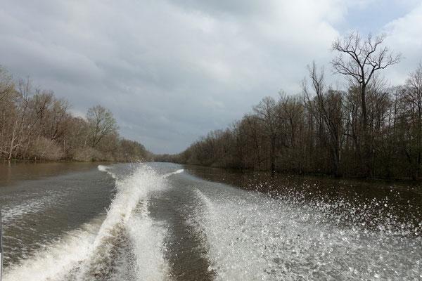 Wir brausen den River hoch...