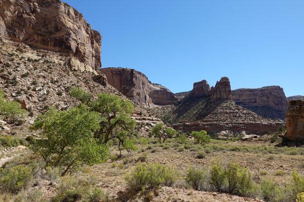 Wunderschön geht es durch den Canyon