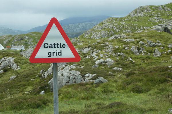 Achtung...ein Cattle grid!