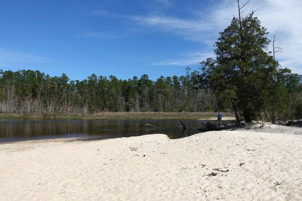 Herrliche Sandbänke säumen das Flussufer