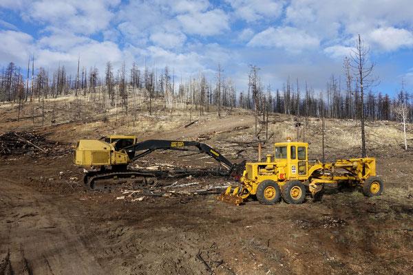 Aufräumarbeiten nach dem Waldbrand...