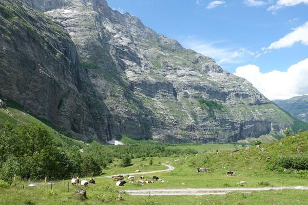 Das Ubachtal mit den Felswänden der Engelhörner