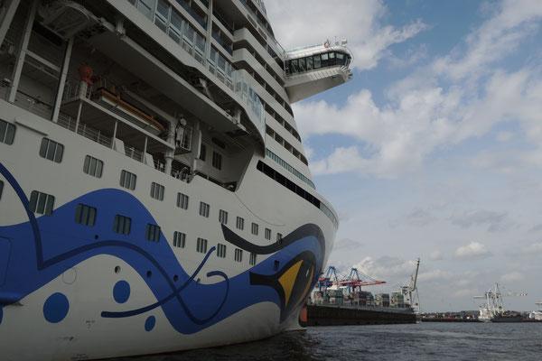 Ein Kreuzfahrtschiff liegt vor Anker