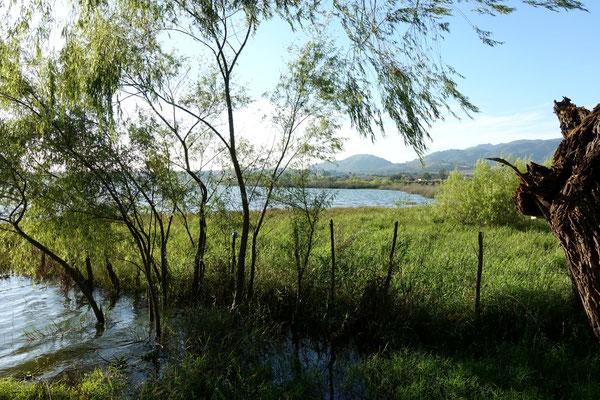 ...das ist der San Pedro Lagunillas