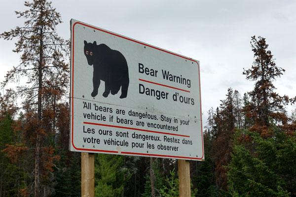 Wir sind im Bärenland!