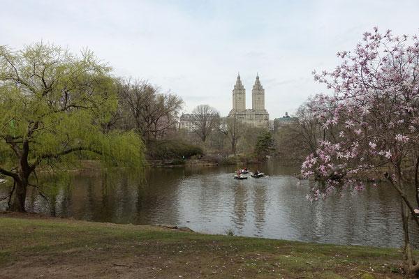 Wir spazieren durch den Central Park