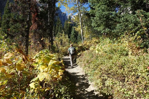 ...und wandern in den Cascade Canyon