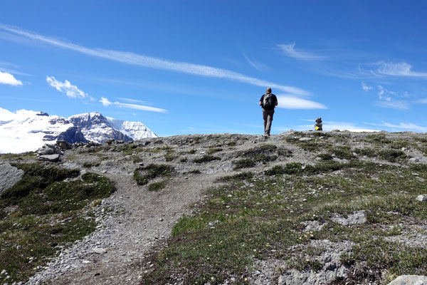 Auf dem Wilcox Ridge