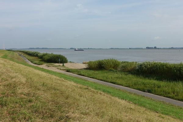 ...fahren wir entlang der Elbe