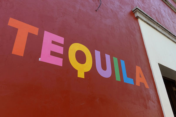 Wir besuchen Tequila