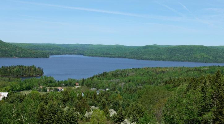 Wald und See...viel hat es davon ;-)