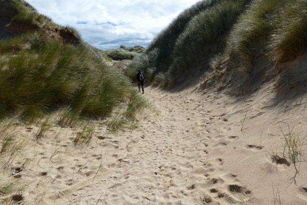 ...und weiter durch hohe Sanddünen!