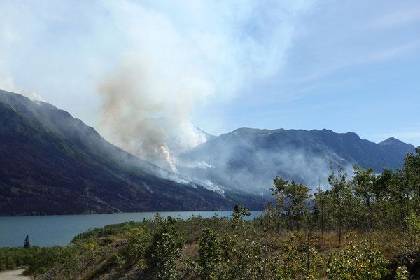 Waldbrände toben auf der anderen Seeseite