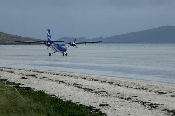 Bei Ebbe landen die kleinen Flieger in der grossen Bucht, wow!