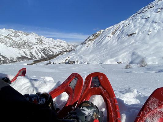 Pause auf der Alp