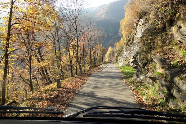 Auf Nebenstrassen durch Kastanienwälder