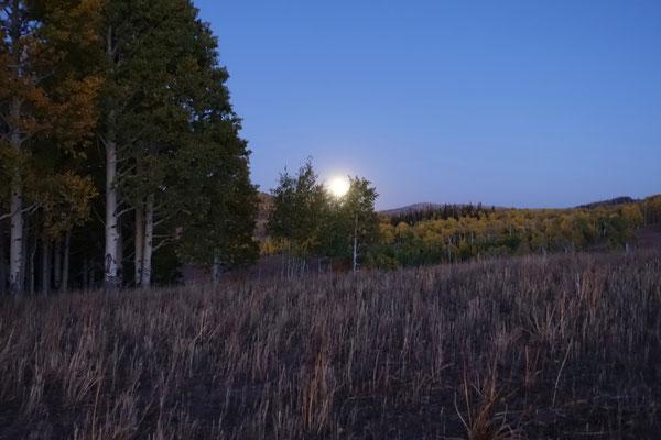 Hinter uns steigt der Mond empor...