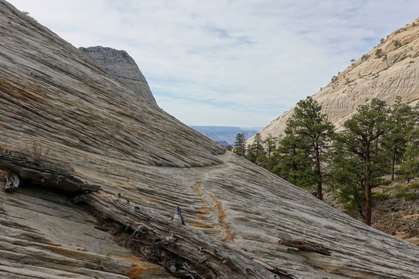 ...wandern wir auf dem Northgate Peaks Trail