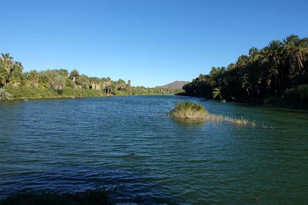 Grüne Oase bei San Ignacio